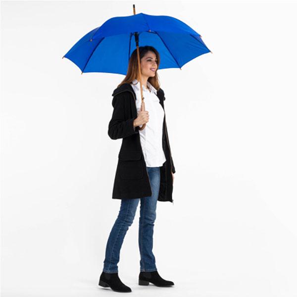 ac76 Parapluie classique automatique 1